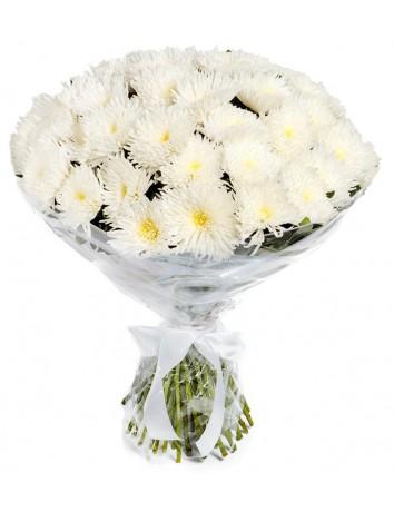 Фея хризантема