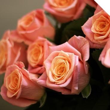 Купить цветы с доставкой в Сочи